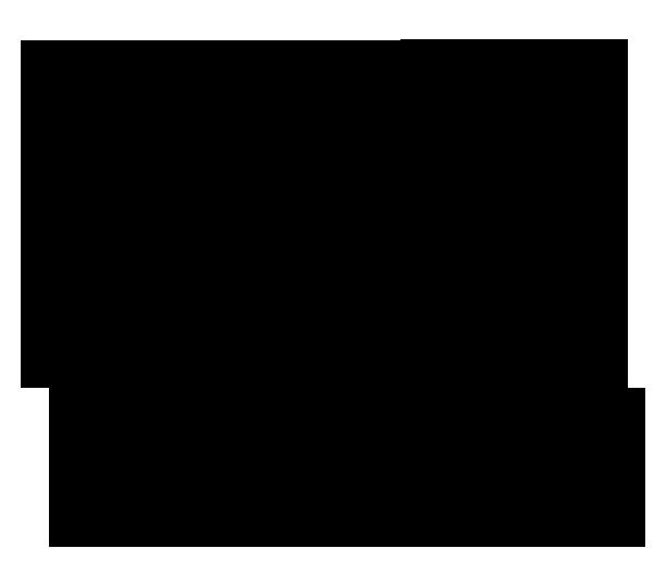 Logo Astronef