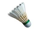 Sport loisir badminton