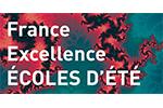 Polytech ecole d'été France excellence