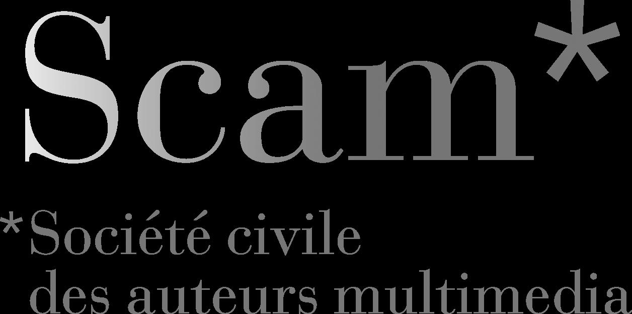 logo scam
