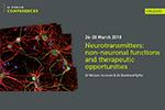 Studium-Neurotransmitters.png