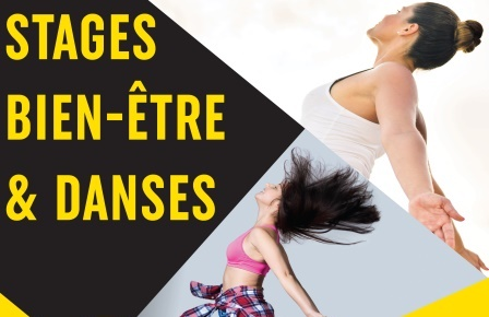 vignette stages BE&danses 17-18 - S1.1 bis.jpg
