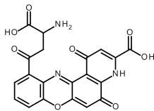 Xanthommatine